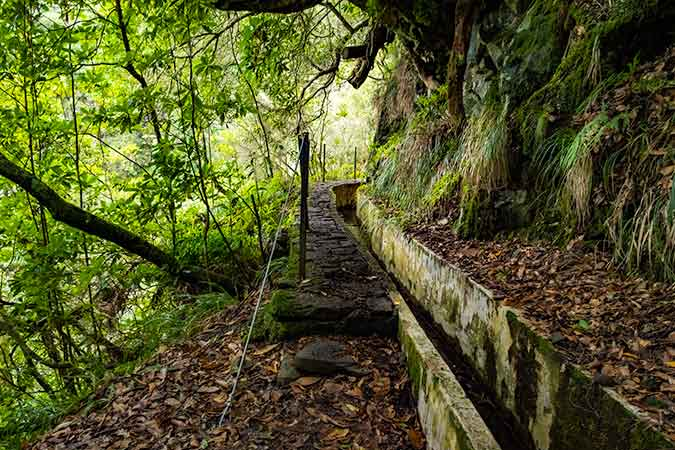 Hikes in Madeira you can do without the car - Levada do Furado
