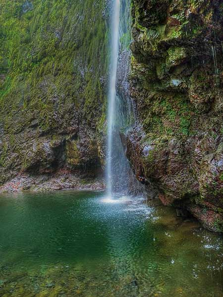 Levada Do Caldeirão Verde - Best Hikes In Madeira You Can Do Without The Car