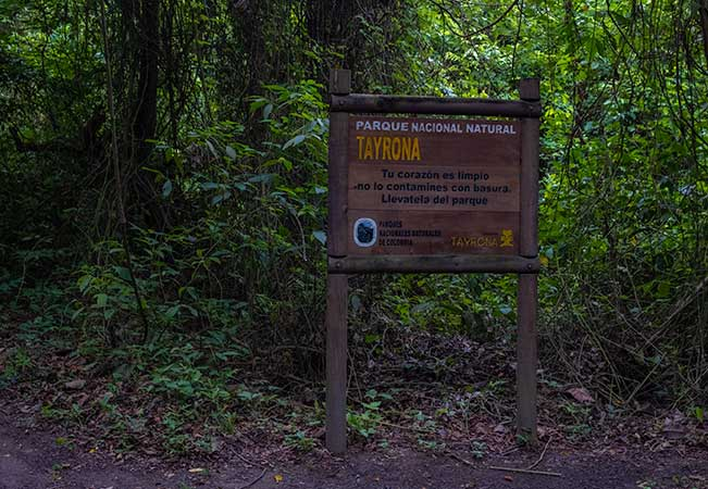 ALL YOU NEED TO KNOW ABOUT VISITING TAYRONA NATIONAL PARK AS A SOLO TRAVELLER