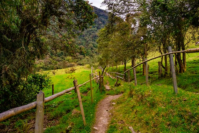 COCORA VALLEY / SURPRISINGLY AWESOME THINGS TO DO IN SALENTO, COLOMBIA / COMPLETE GUIDE